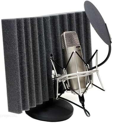 Samson Samson  C01U Pak Voice