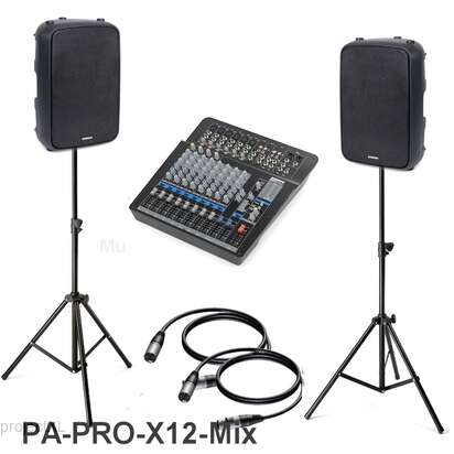 Samson Samson  Pa-pro-x12-mix